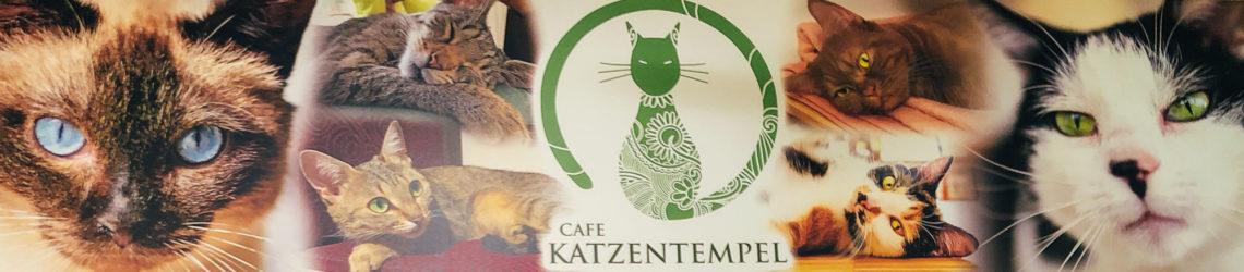 Café Katzentempel Nürnberg